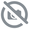 BLENDED SCOTCH WHISKY LAUDER'S QUEEN MARY 70CL * 40°